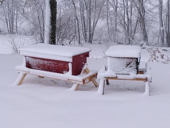 Beuten im Schnee