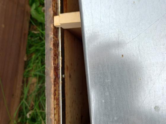 Alte Beutenwelt Metallschienen, wird heute nur noch als einfacher Metallstreifen angeboten...