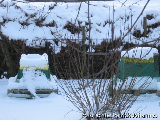 Fluglöcher verschneit