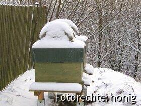 2009 12 18 dadant im schnee 01