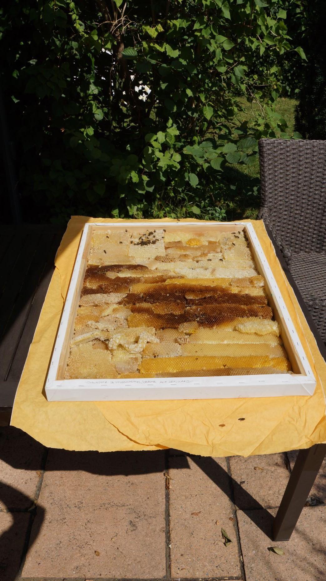 Bienenwaben-in-Keilrahmen-2018-Bild-01