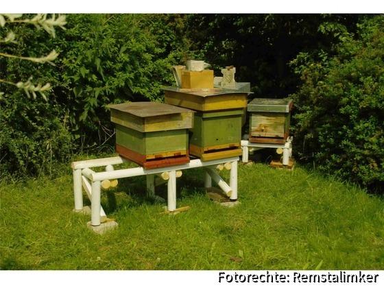 03 SDIM3225  Beuten im Garten von Simmerl