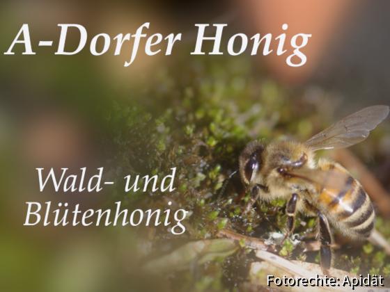 Etikett Wald- und Blütenhonig 2019