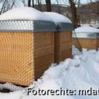 Bienenstand im Dezember 2008.