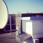 Bienenbeute mit Satellitenempfang