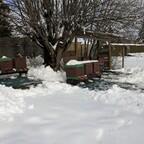 2. Februar 2019, 3°C im Schatten und strahlender Sonnenschein mittags