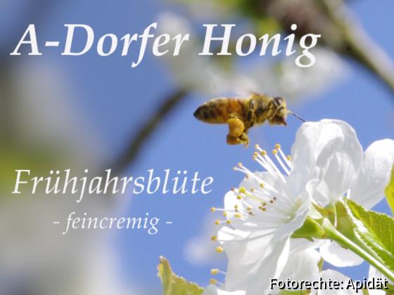 Etikett Frühjahrsblüte 2019