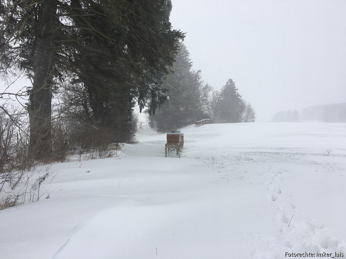 Winter Ostallgäu 05.01.2018