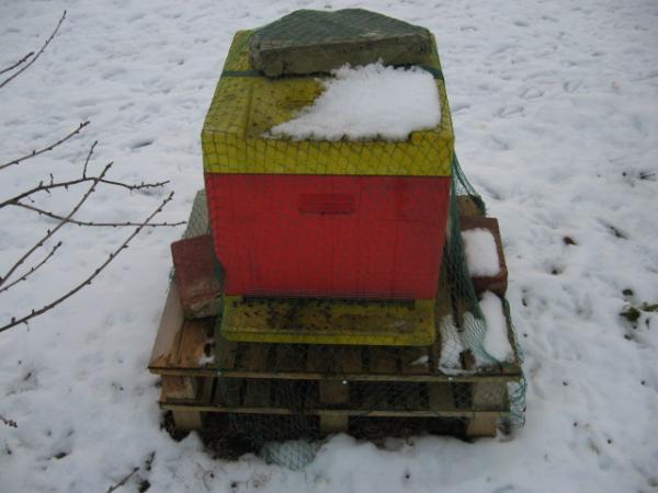 Beute im Schnee
