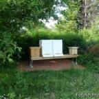 Halbzarge als Honigraum am 25.Mai 2008