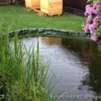 Die ersten Tage mit den Bienen