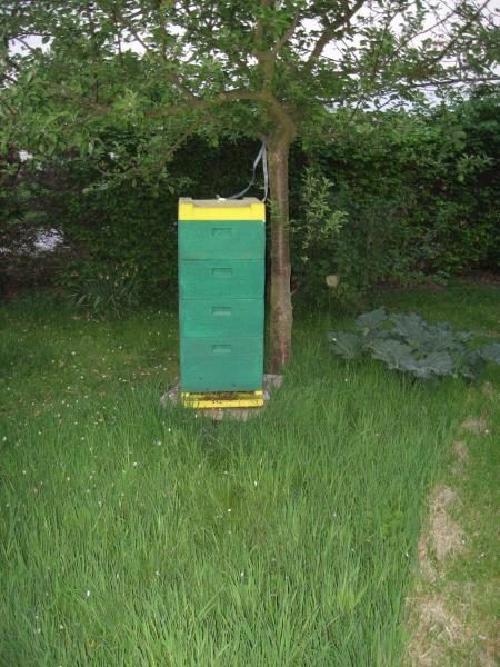 Buckfastvolk 2007