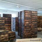 600 neue Honigräume für 2013