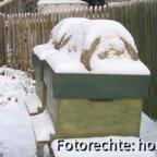 2009 12 18 dadant im schnee 02