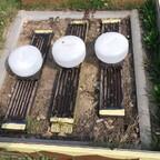 Bienen auch an der Tränkebei unter 10 °C