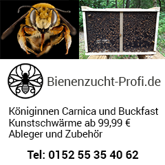 Bienenzucht-Profi