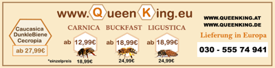 Queen King Shop